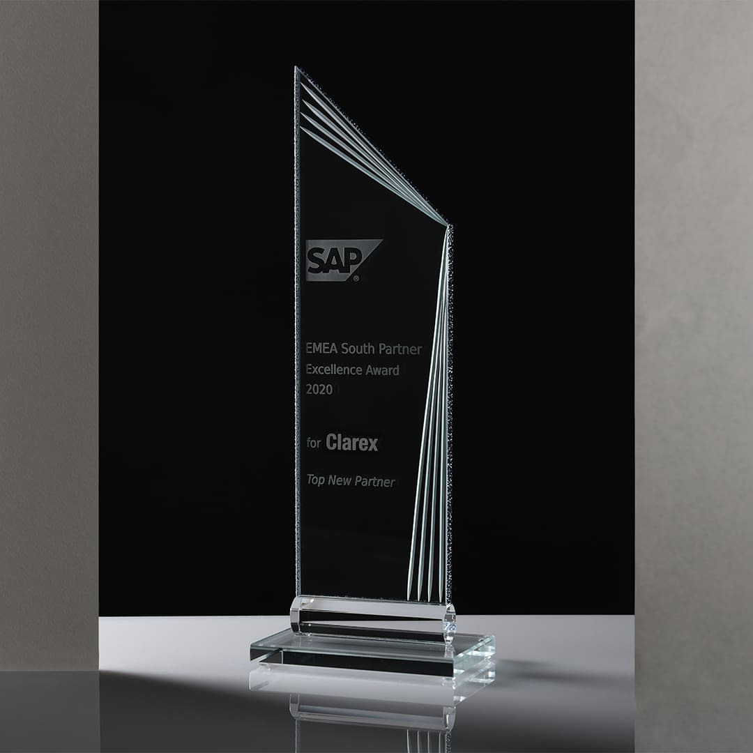 SAP Partner Excellence Award